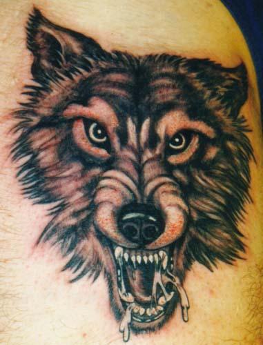 动物头像 - 纹身纹绣